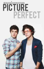 Picture Perfect (Lirry) by XNoalovesyou