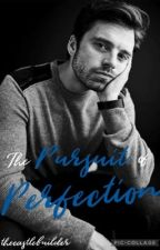 The Pursuit of Perfection (A Bucky Barnes Fanfic) [Sequel to Winter Is Coming] by thecastlebuilder