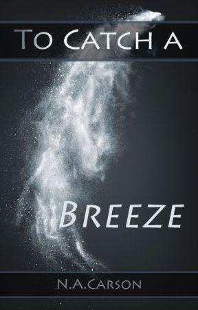 To Catch a Breeze by varzanic