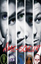 Âme-soeur ( One Direction fan fiction) ( Arrêté) by LysanneD