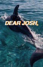 dear josh || joshler by bigcityblues
