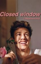 Closed Window (camerondallas) by beckhamchild