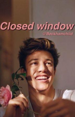 Closed Window (camerondallas) by beckhamchild