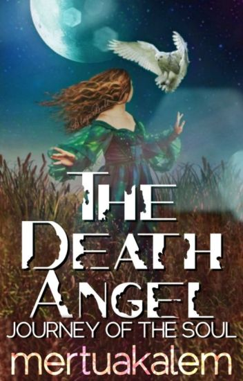 11. Safety House