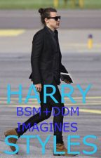 Harry Styles BSM/DDM  by fangirlllifee