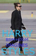 Harry Styles BSM/DDM  by fangirlllifee