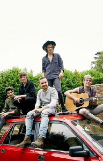 Удочеренная One Direction.