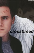 Crossbreed - Tronnor AU by itsmaah
