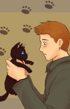 The Hunter And The Little Black Kitten by TeamOTPS