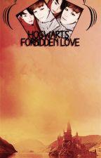 Hogwarts Forbidden Love. by lumineescente