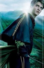 Where'd You Go (Cedric Diggory) by sunshinensarcasm