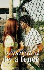 Separated by a Fence by peaceanddisaster