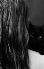 Black Cat by ArwaElbokhmy