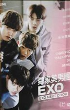 Exo Next Door, Again!    (E D I T I N G) by ShinJiKai