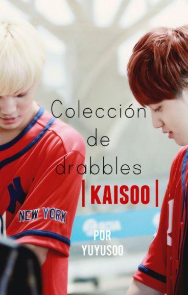 Colección de drabbles; Kaisoo | HIATUS