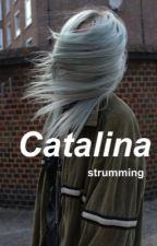 catalina // l.h. au by strumming
