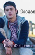 Grosse [ n.m ] by ElodieDelsemme
