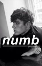 numb § shawn mendes by groovyymendes