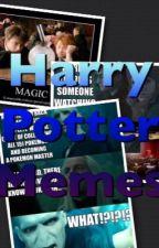 Harry Potter Memes by keltyu23