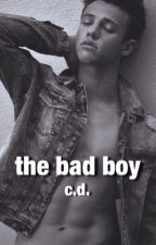 the bad boy |c.d.| by grindingkermit