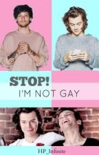 STOP! I'm not gay #1 by LudovicoVitaMia