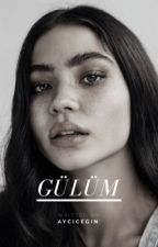Gülüm- Meine Rose by aycicegin
