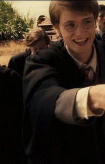 Storm Potter (James potters Twin Sister)