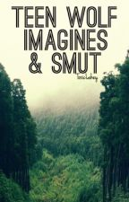 【Teen Wolf Imagines & Smut】 by toxiclahey