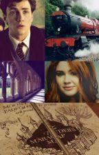 La vie est tout sauf un long fleuve tranquille (fanfiction Harry Potter) by smittina
