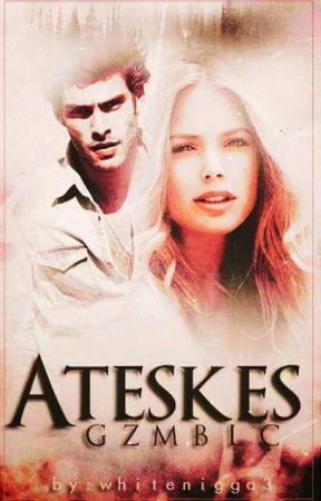 ATEŞKES (KİTAP) by GzmBlc