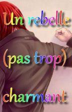Un rebelle (pas trop) charmant by HervelineLouin
