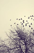 شعر (Poesia) by LisaGazzillo