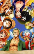 One piece x reader by Ultimateyandere