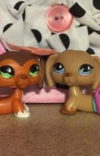 The two best friends (littlest pet shop story) by Hayleebug2003