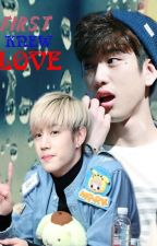 (Longfic) First knew love... Markjin by Markjin_Lan