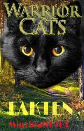 Fakten | Warrior Cats |~ by Minzblatt0304