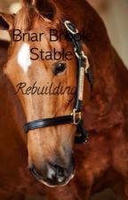 {Briar Brook Stable: Rebuilding} (Book 1) ON HOLD by switchthediagonal