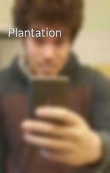 Plantation by ArminAryafar