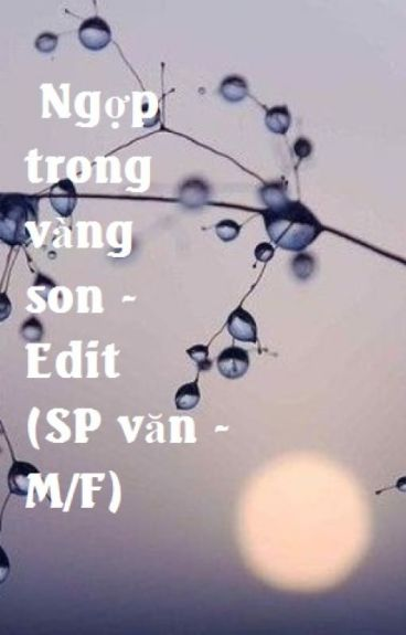 Ngợp trong vàng son - Edit (SP văn - M/F) - Hoàn