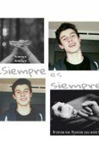 ¿Siempre es siempre? ~Shawn Mendes by mendesss01
