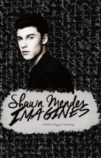 Shawn Mendes Imagines by narniasprincess