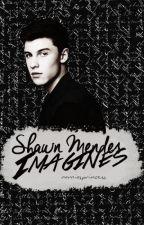 Shawn Mendes Imagines by narniasprincess