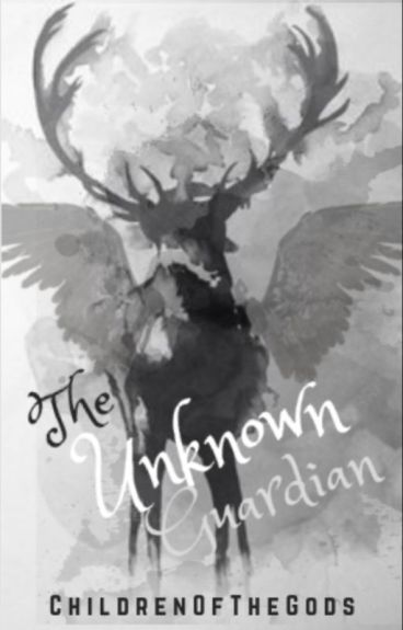 The Unknown Guardian