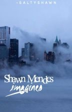 Shawn Mendes Imagines by -saltyshawn