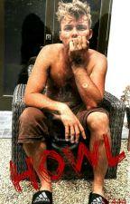 Howl (Ashton Irwin) + by StylesImagines444