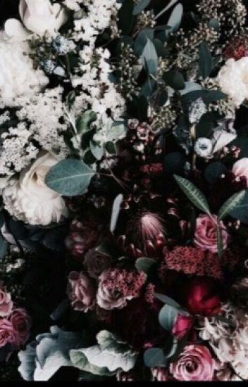SKINNY LOVE ⇢ H.P X READERS