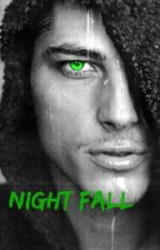 Night Fall by curiousity76