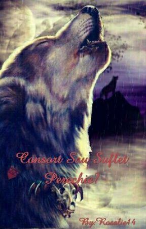 Consort Sau Suflete Perechie by Rosalie14