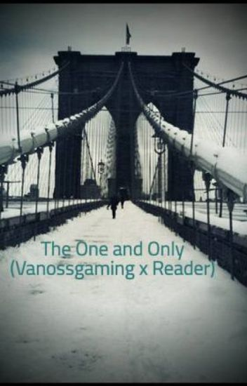 The One and Only (Vanossgaming x Reader)