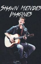 Shawn Mendes Imagines by senpaimendes